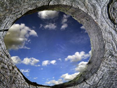 Through the Knothole: Quickly isolate and move past obstacles, promptly improve an underperforming team